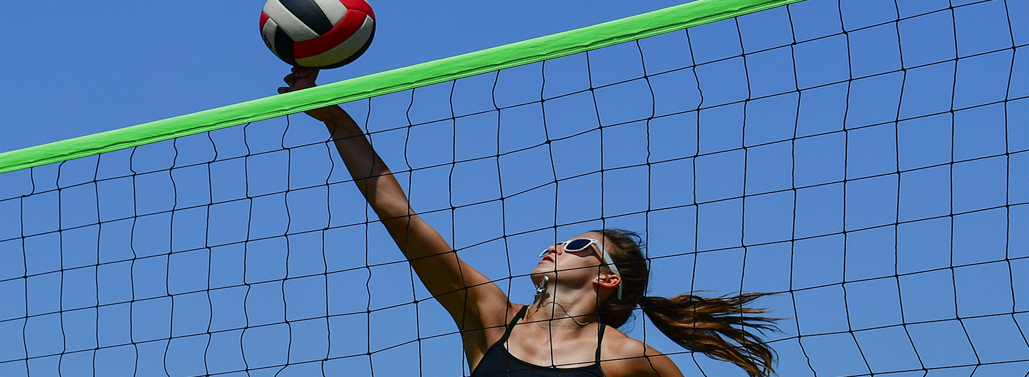Park And Sun Sports S Volleyball Green Net